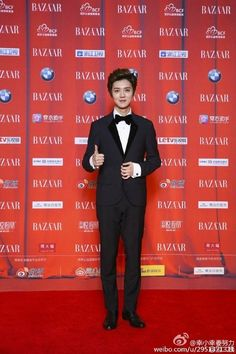 Chinese and Korean Stars Descend on the 2015 Bazaar Star Charity Night in Beijing   A Koala's Playground