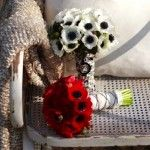 anemone-flower-bouquets-red