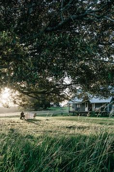 Marnie Hawson, purpose-driven interior, travel and lifestyle photographer — Ewing Farm, Tylden for Country Style magazine Country Style Magazine, Beautiful Homes, Beautiful Places, Future Farms, Country Lifestyle, Back To Nature, My Dream Home, Dream Life, Future House