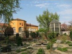 Botanical Garden (Orto Botanico), Padua - World Heritage Site - Pictures, info and travel reports