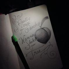 14/100 TheJoker #The100DayProject #100daysoflyricsinmyhead #stevemiller #classicrock #peaches #drawing #pencil #lettering#lyrics #lyricdrawing #handlettering  #goodtype #sketch #suredontwanttohurtnoone