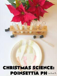 Christmas Science: Poinsettia pH Chemistry Experiment. Great holiday STEM!  via @Karyn ~ Teach Beside Me