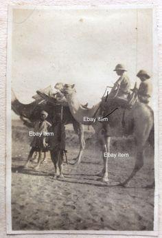 1917 Palestine London Field Ambulance 'Cacolets' photograph original  | eBay