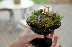 Love this tiny Fairy Garden - perfect for your desk at work! via Inspire Bohemia