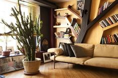 New York home, check out those shelves. Tree Bookshelf, Tree Shelf, Cool Bookshelves, Book Shelves, Bookshelf Ideas, Book Storage, Bookcases, New York Homes, Looks Cool