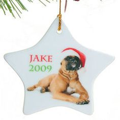 Star Shaped Personalized Pet Ornament..Need this for my doggie