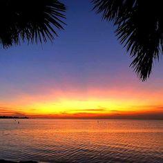 Who else has been witnessing the beautiful Sunrises and Sunsets this week? We can't get enough!! 📷: Jackie Young    #Sunrise #Sunset #CanIGetAWitness #StGeorgeIslandFL #RVPSGI#Apalachicola #Travel #VisitFL #SGI #GulfofMexico #stgeorgeisland #familytravel #beach #beachlife #gulfcoast #lovefl #saltlife #coastal #beachdreams #islandlife #oysters #beachlover #Beautiful #forgottenCoast    #Regram via @B7Jr4gQDbT3 Vacation Resorts, Beautiful Sunrise, Gulf Of Mexico, Island Life, Family Travel, Coastal, Ocean, Sunrises, Oysters