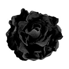AD_Flower1.png ❤ liked on Polyvore featuring flowers
