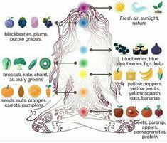 Learn to heal your chakras with these simply diet guidelines. - - Learn to heal your chakras with these simply diet guidelines. Yoga Learn to heal your chakras with these simply diet guidelines. Ayurveda, Les Chakras, Yoga For Chakras, How To Balance Chakras, Kundalini Yoga Poses, Restorative Yoga Poses, Mudras, Chakra System, Chakra Balancing