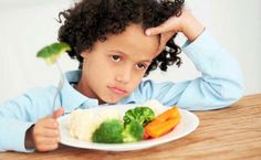 Foods You Can Prepare for The Picky Eater