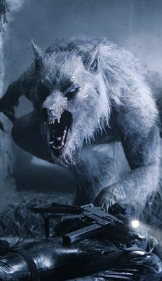1000 Images About Werewolf Popculture On Pinterest Film
