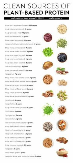 Clean Sources of Plant Protein