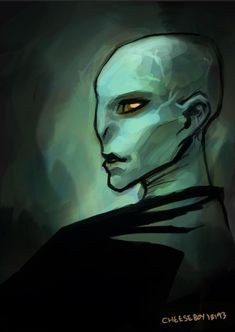 Harry Potter Voldemort, Lord Voldemort, Harry Potter Characters, Cartoon Characters, Fictional Characters, Slytherin, Nerdy, Character Design, Deviantart