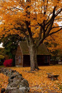 Exploring New England's Fall Foliage on Jeff Foliage