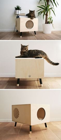 This Minimalist Modern Cat Bed Doubles As A Functional Side Table This modern cat bed / table named Nest, is made from high-end plywood, and as the design of the table is minimal, it can also double as a side table in any modern interior. - Add Modern To Pet Furniture, Plywood Furniture, Modern Furniture, Furniture Design, Furniture Ideas, Furniture Stores, Office Furniture, Furniture Websites, Furniture Market