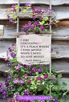 I like gardening— it's a place where I find myself when I need to lose myself. ~Alice Sebold