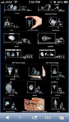 Audiology & speech pathology Best site for nerdy gifts http://www.bluetreepublishing.com/