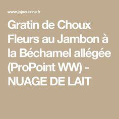 Gratin de Choux Fleurs au Jambon à la Béchamel allégée (ProPoint WW) - NUAGE DE LAIT