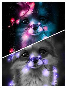 Cute Wolf Drawings, Cute Animal Drawings Kawaii, Cute Cartoon Animals, Anime Animals, Cute Galaxy Wallpaper, Cute Wallpaper Backgrounds, Animal Wallpaper, Cute Wallpapers, Baby Animals Pictures
