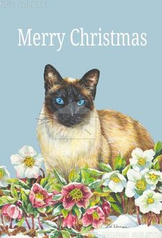 Mango Salute greeting card: Siamese cat and Christmas roses, by Zoe Norman  #christmas #christmascard #greetingcard #card