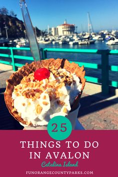 Avalon - Top 25 Things to Do in Catalina Island's Popular Destination