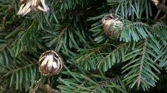 Новогодние украшения. Звёздочки из газетных трубочек. Часть 7.