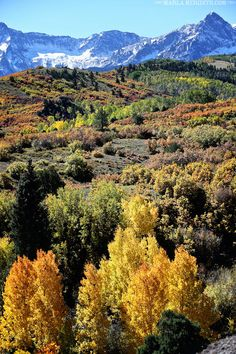 Autumn at the Double RL Ranch | near Telluride, CO | MarlaMeridith.com