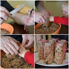 """Peanut butter bird treat idea for """"...3 Cheers for Animals!"""" Journey."""
