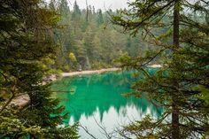 Amazing green by AleksandrRoma #nature #mothernature #travel #traveling #vacation #visiting #trip #holiday #tourism #tourist #photooftheday #amazing #picoftheday