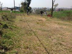 ९ आना घडेरी प्रति आना ९ लाख १० हजारका दरले बिक्रिमा @ नयापाटी, काठमाडौँ
