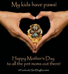 Love that I'm a fur-momma to my beauties!
