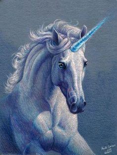 Pretty Unicorn !!