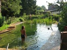 Gorgeous Backyard Swimming Ponds Ideas - Page 33 of 34 Natural Swimming Ponds, Natural Pond, Outdoor Swimming Pool, Swimming Pools, Backyard Water Feature, Ponds Backyard, Garden Pool, Water Garden, Pond Landscaping