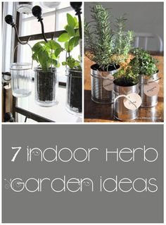 Herbal Gardening Ideas 7 indoor herb garden ideas - These are great ideas not only to create an herb garden, but to make it a cute decoration in your house!