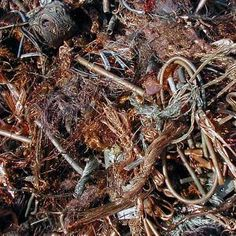 We always focus on providing first grade Scrap metal produce with the add-on values to attain our goals within specified time period. Recycling Steel, Scrap Recycling, Copper Prices, Metal Prices, Aluminum Cans, Aluminum Radiator, Aluminum Wheels, Recycled Bottles, Recycle Plastic Bottles