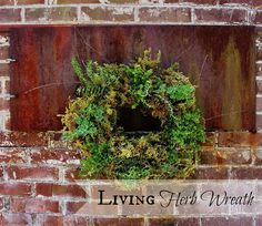 Living Herb Wreath.....love this idea for summer.  thistlewoodfarms.com