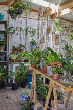 Explore Picturesque Kalk Bay With Our Quick Guide Bagel Cafe, Creamy Cauliflower Soup, Garden Shop, Wooden Tables, Great Places, Indoor Plants, House Plants, Concept, Explore