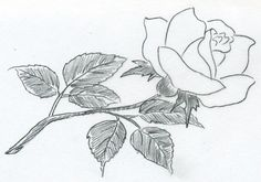 Easy drawings to copy sketches to copy sketch of a rose you can do in les. Easy Pencil Drawings, Pencil Drawings Of Flowers, Easy Drawings Sketches, Sketches Of Love, Easy Drawings For Kids, Beautiful Sketches, Rose Drawings, Simple Drawings, Pencil Art