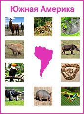 Монтессори-материал. Южная Америка