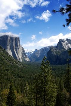 Yosemite National Park- Love to go camping on a weekend that the bears are off visiting relatives.