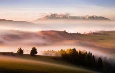 Just a silence by Peter Svoboda