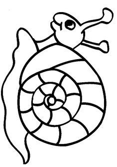 kleurplaten dieren: Slakken tekeningen kleurplaten dieren