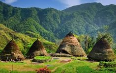 The uniqueness and exoticism Village Wae Rebo in Flores - Indonesia One required tourism destination Best Places To Live, Places To Travel, Places To See, Komodo Island, Vernacular Architecture, Natural Building, Beautiful Places In The World, Labuan, Asia Travel
