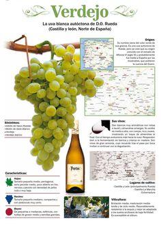 #Verdejo, la uva blanca autóctona de D.O. Rueda