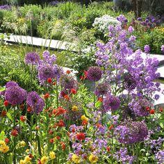 Sådan skaber du en harmonisk have fuld af farver Unique Gardens, Garden Fencing, Dream Garden, Garden Projects, Garden Inspiration, Beautiful Flowers, Flora, Planters, Outdoors