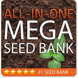 All-in-1 MEGA SEED BANK | SeedsNow.com  Grow your seeds! The Most High says the seed will be our meat!