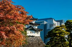 Fujimi keep at Tokyo's Imperial Palace with the #Marunouchi beyond - #tokyo #palace #japan #autumn
