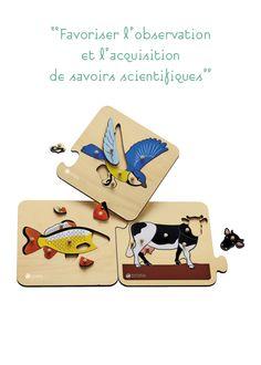 3 puzzles d'animaux vertébrés | Collection Montessori