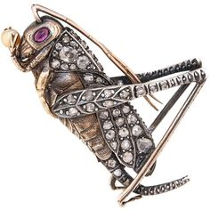 Gem Set Pearl Silver Yellow Gold Grass Hopper Brooch circa 1910. Circa 1910 Silver and Yellow Gold 2 sided Grass Hopper Brooch, extremely well detailed and set with Old Mine Cut and Rose cut Diamonds, Ruby Eyes and Holding a natural Pearl. Measuring 2 inch in length.