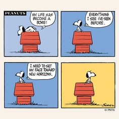 'Sometimes all you need to do is turn around. Thanks Snoopy! Snoopy Cartoon, Snoopy Comics, Peanuts Cartoon, Peanuts Snoopy, Peanuts Comics, Derp Comics, Charles Shultz, Peanuts Characters, Snoopy Quotes